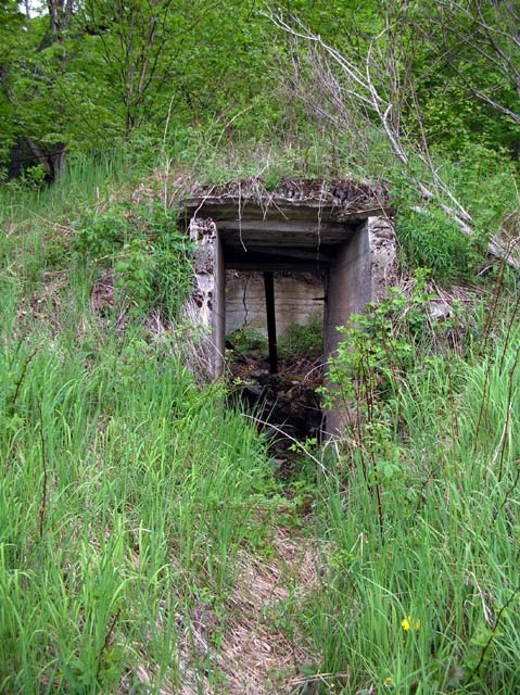 Old Root Cellar seen on hike